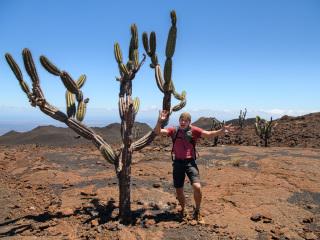 Galapágy - kaktusový muž