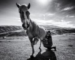 Horse Milk – Kyrgyzstan, Tash-Rabat, 2019